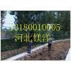 供应2米高围墙网 果园防护网 山林隔离网