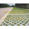 供应草坪砖施工工艺、介绍、图片 金源草坪石厂家