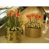 供应三杆椰树-仿真花,仿真树,仿真植物,仿真花艺