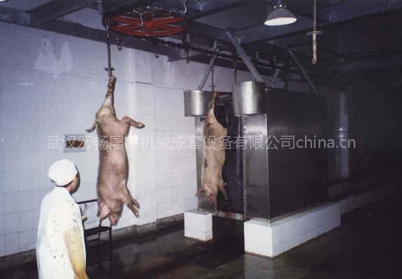 供应洗猪机