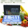 供应蔬菜农药检测仪器,检测蔬菜农药的仪器,检测蔬菜农药的仪器厂家