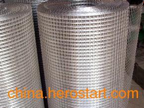 供应电焊不锈钢丝网