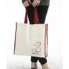 供应东莞超市环保袋  无纺布购物袋 彩印环保袋制作