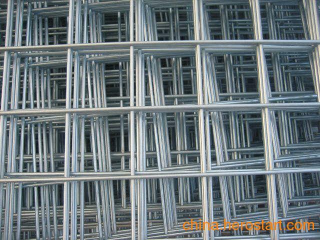 供应生产出口标准铁丝网 编织/焊接铁丝网