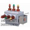 供应西安耐电ZW10-12G户外12KV高压真空断路器 陕西专用