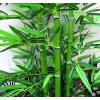 供应人造竹子-仿真花,仿真树,仿真植物,仿真花艺