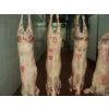 供应冷冻羊肉羊脚羊蛋羊心羊肾羊鞭羊排骨