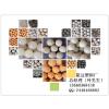 供应简边塑料厂新型研发纺织洗水辅料-洗水球弹力球