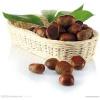 供应长期直销进口各种干果板栗 核桃 杏仁 开心果 碧根果