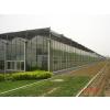 供应温室建设,温室造价,温室价格,连栋温室造价,大棚造价
