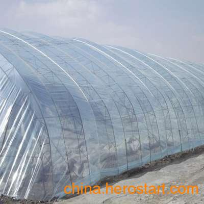 农膜、地膜、大棚膜、塑料薄膜厂家供应