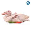 供应冷冻整鸭鸭肉鸭爪批发零售厂商直销价格