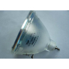 供应UHP120W大屏灯泡,R9842020巴可大屏灯泡