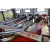 供应果蔬生产设备 青岛烟台日照 蔬菜清洗机 去皮机 切丝机