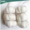 生姜 大蒜 鸡蛋网袋价格,深川包装,生姜 大蒜 鸡蛋网袋供应