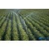 甘肃农业智能节水灌溉工程设备
