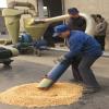 供应形成产业输送发展优势吸粮机