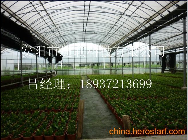 供应保定温室大棚建设材料由石家庄蔬菜大棚骨架厂家加工