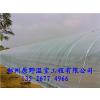 供应郑州温室大棚建造 大棚建设价格是多少