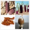 现货供应优质纯天然补肾壮阳原料 锁阳提取物