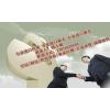 供应仪器设备上海机场进口报关步骤费用