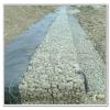 供应雄标石笼网箱|格宾网笼|雷诺护垫|铅丝石笼网|格宾石笼网