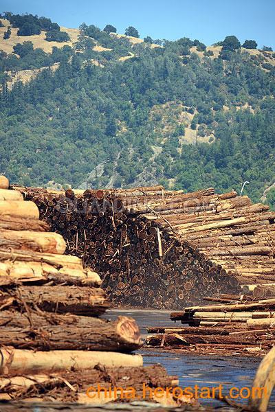 供应黄埔木家具进口报关 非洲酸枝进口木家具手续