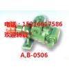 供应A05永合兴油泵