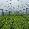生态农业发展前景:靠谱的生态农业观光园推荐
