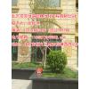 别墅花园设计公司,北京别墅花园设计公司