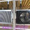 供应养殖散热风机