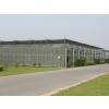 供应河北山西陕西内蒙阳光板温室建设造价,钢骨架大棚设计施工