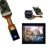 供应零点2英寸彩色微型显示器 夜视仪显示器 全彩取景器