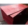供应天津建筑木模板小红板批发市场价格行情