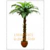 供应庆缘景观专业批发仿真棕榈树假树