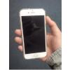 供应蘋果iPhone5S/iPhone6現貨