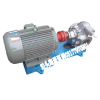 供应KCB300不锈钢耐腐蚀齿轮油泵