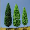 供应建筑模型树雪松树