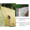 供应众力护坡_环保草毯的价值_环保草毯