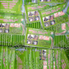 供应荆州低价让利定做纸巾广告,钱夹包纸巾,盒装餐巾纸淘宝厂家