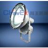 供应防水防尘防震投光灯产品详情WF250A