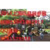 供应2015年上海玩具展2015第十四届上海国际玩具展
