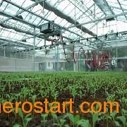 茄子育苗温室建造-茄子育苗温室-茄子育苗温室承建商【天翔】feflaewafe
