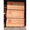 供应海棠木价格