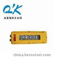 供应DGS10/127L矿用隔爆LED