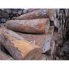 供应张家港木材