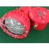 供应DGS175/127B(A)矿用投光灯