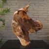 供应崖柏半天然木根雕艺术收藏品