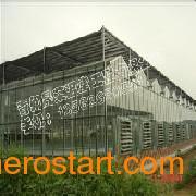 茄子育苗温室建造 黄瓜苗温室大棚建造 苦瓜苗温室大棚建造