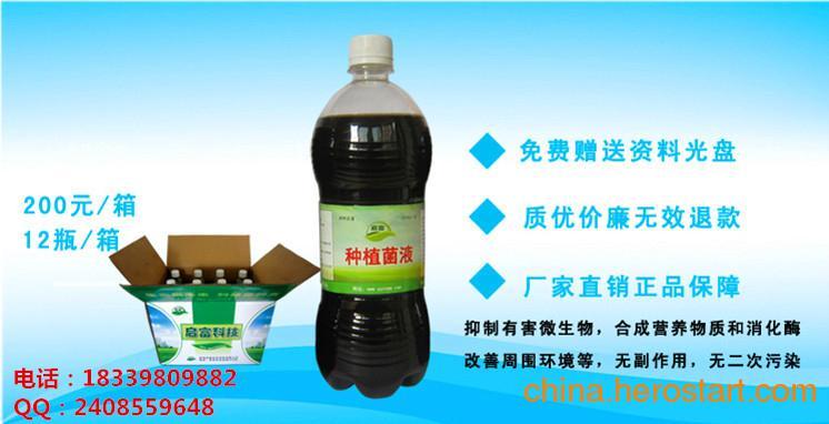 供应启富种植EM菌液怎么用在葡萄种植上用?厂家多少?怎么购买?